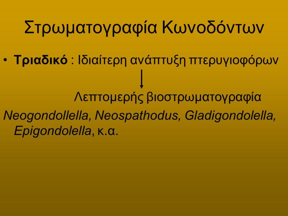Στρωματογραφία Κωνοδόντων Τριαδικό : Ιδιαίτερη ανάπτυξη πτερυγιοφόρων Λεπτομερής βιοστρωματογραφία Neogondollella, Neospathodus, Gladigondolella, Epig