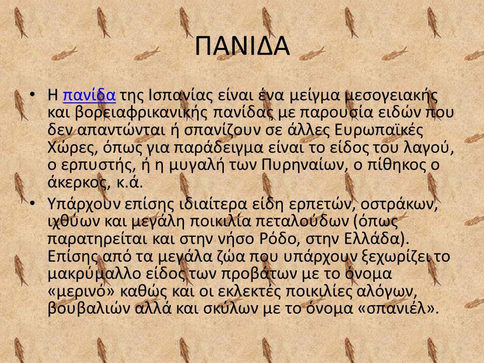 ΠΑΝΙΔΑ Η πανίδα της Ισπανίας είναι ένα μείγμα μεσογειακής και βορειαφρικανικής πανίδας με παρουσία ειδών που δεν απαντώνται ή σπανίζουν σε άλλες Ευρωπαϊκές Χώρες, όπως για παράδειγμα είναι το είδος του λαγού, ο ερπυστής, ή η μυγαλή των Πυρηναίων, ο πίθηκος ο άκερκος, κ.ά.πανίδα Υπάρχουν επίσης ιδιαίτερα είδη ερπετών, οστράκων, ιχθύων και μεγάλη ποικιλία πεταλούδων (όπως παρατηρείται και στην νήσο Ρόδο, στην Ελλάδα).