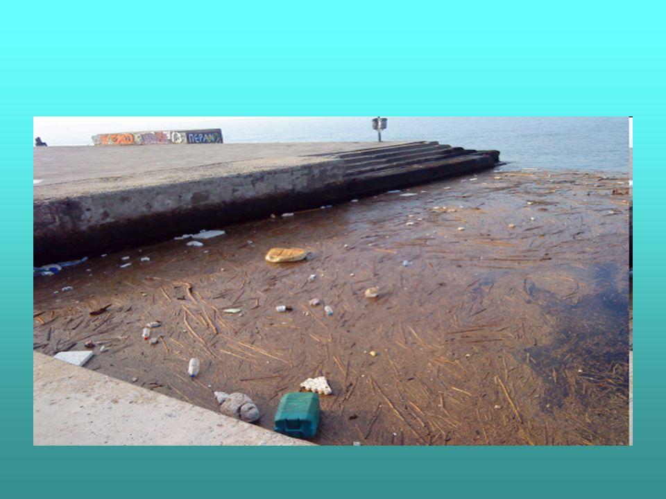 Οι Θάλασσες εκτός του ότι αποτελούν αποδέκτες των ποταμών που έχουν ρυπανθεί, δέχονται απευθείας αστικά, αγροτικά, και βιομηχανικά λύματα από την ξηρά, ενώ ρυπαίνονται και από άλλους παράγοντες όπως είναι πετρελαιοκηλίδες από ατυχήματα πετρελαιοφόρων ή υποθαλάσσιων γεωτρήσεων πετρελαίου, ή ρίψη στερεών και υγρών – συχνά τοξικών – αποβλήτων ( οξέα,άλατα βαρέων μετάλλων κλπ )από πλοία στην ανοιχτή θάλασσα.