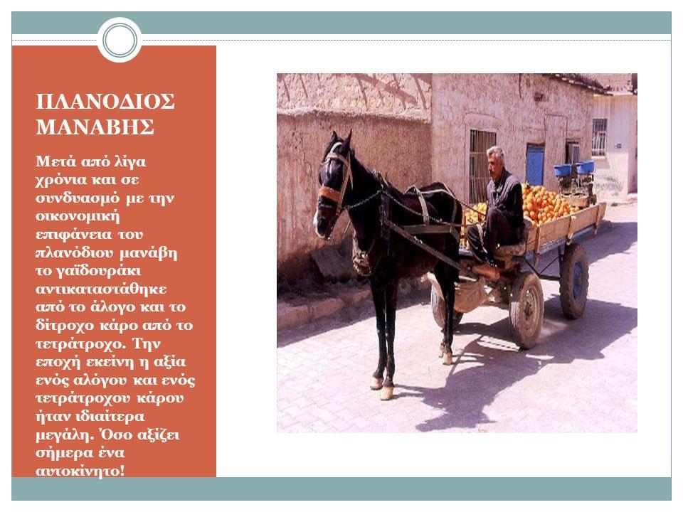 ΠΛΑΝΟΔΙΟΣ ΜΑΝΑΒΗΣ Μετά από λίγα χρόνια και σε συνδυασμό με την οικονομική επιφάνεια του πλανόδιου μανάβη το γαϊδουράκι αντικαταστάθηκε από το άλογο και το δίτροχο κάρο από το τετράτροχο.