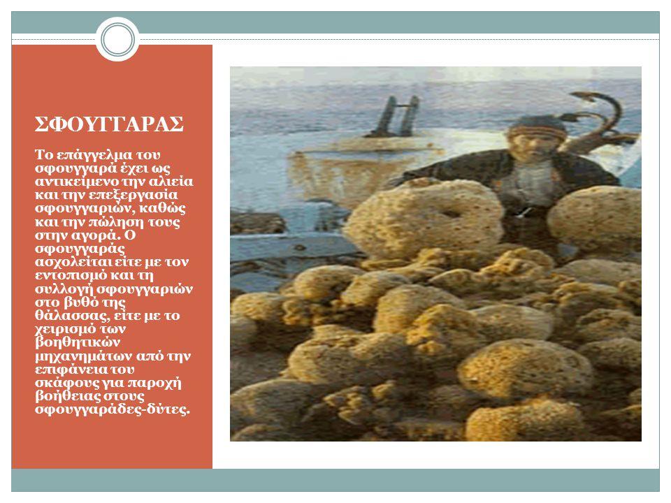 ΣΦΟΥΓΓΑΡΑΣ Το επάγγελμα του σφουγγαρά έχει ως αντικείμενο την αλιεία και την επεξεργασία σφουγγαριών, καθώς και την πώληση τους στην αγορά. Ο σφουγγαρ
