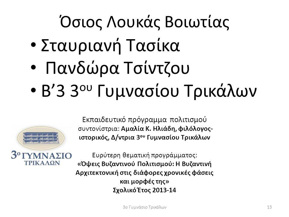 Όσιος Λουκάς Βοιωτίας Σταυριανή Τασίκα Πανδώρα Τσίντζου Β'3 3 ου Γυμνασίου Τρικάλων 133ο Γυμνάσιο Τρικάλων Εκπαιδευτικό πρόγραμμα πολιτισμού συντονίστ