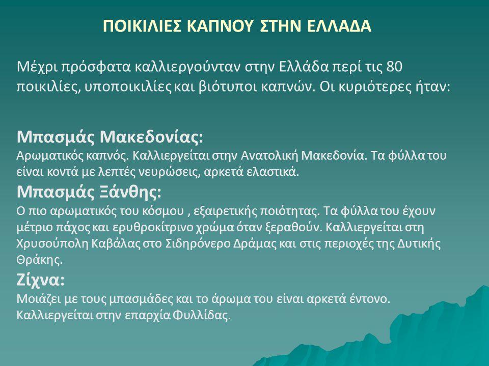 ΠΟΙΚΙΛΙΕΣ ΚΑΠΝΟΥ ΣΤΗΝ ΕΛΛΑΔΑ Μέχρι πρόσφατα καλλιεργούνταν στην Ελλάδα περί τις 80 ποικιλίες, υποποικιλίες και βιότυποι καπνών. Οι κυριότερες ήταν: Μπ