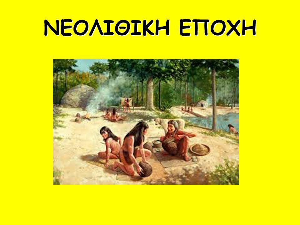 Ως Νεολιθική Εποχή ορίζεται εκείνη η περίοδος της ανθρώπινης πολιτισμικής ανάπτυξης που ακολουθεί μετά την Παλαιολιθική Περίοδο.Η Νεολιθική Περίοδος ξεκίνησε περίπου το 10000 π.Χ.