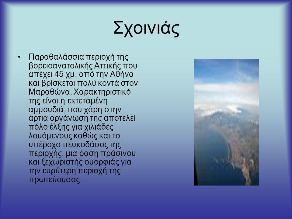 Σχοινιάς Παραθαλάσσια περιοχή της βορειοανατολικής Αττικής που απέχει 45 χμ.