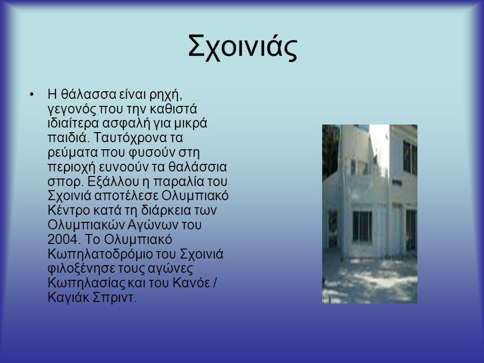 Σχοινιάς Είναι μια από τις αγαπημένες παραλίες των Αθηναίων, καθώς στην περιοχή αυτή βρίσκουν τα πάντα.