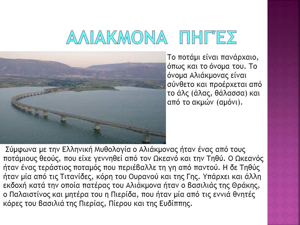 Το ποτάμι είναι πανάρχαιο, όπως και το όνομα του. Το όνομα Αλιάκμονας είναι σύνθετο και προέρχεται από το άλς (άλας, θάλασσα) και από το ακμών (αμόνι)
