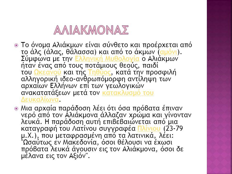  Το όνομα Αλιάκμων είναι σύνθετο και προέρχεται από το άλς (άλας, θάλασσα) και από το άκμων (αμόνι). Σύμφωνα με την Ελληνική Μυθολογία ο Αλιάκμων ήτα