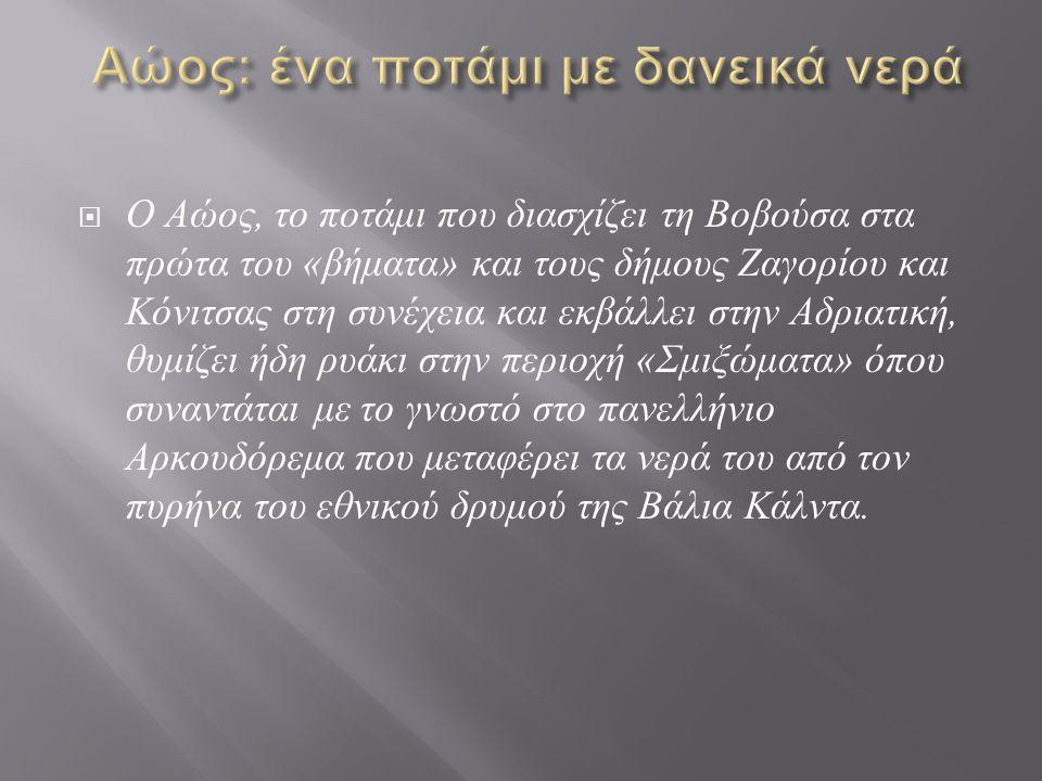  Ο Αώος βρίσκεται ανάμεσα σε δύο σημαντικές προστατευμένες περιοχές, τους Εθνικούς Δρυμούς Πίνδου ( Βάλια Κάλντα ) και του Βίκου - Αώου.