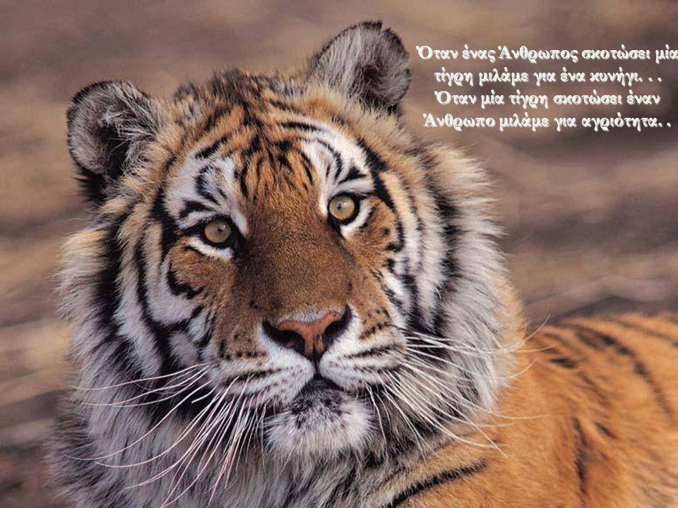 Ο Άνθρωπος έχει μεταμορφώσει την Γη σε μια κόλαση για τα Ζώα... Arthur Schopenhauer