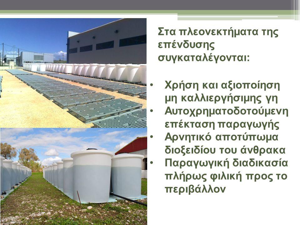 Στα πλεονεκτήματα της επένδυσης συγκαταλέγονται: Χρήση και αξιοποίηση μη καλλιεργήσιμης γη Αυτοχρηματοδοτούμενη επέκταση παραγωγής Αρνητικό αποτύπωμα