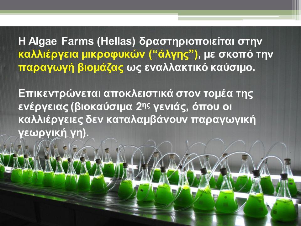 Η Algae Farms (Hellas) σκοπεύει να παράγει βιοκαύσιμα από άλγη με υψηλή θερμιδική αξία και ανταγωνιστικό κόστος παραγωγής, τα οποία θα διαθέτει σε τιμή χαμηλότερη από τη σημερινή τιμή των συμβατικών ή άλλων ανανεώσιμων καυσίμων