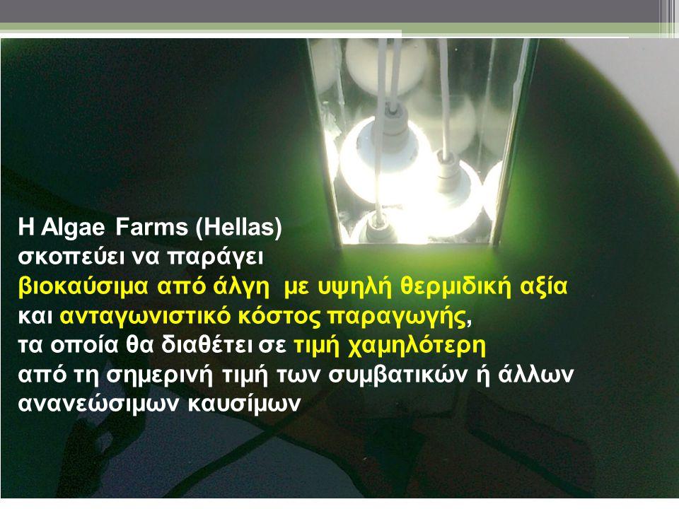 Η Algae Farms (Hellas) σκοπεύει να παράγει βιοκαύσιμα από άλγη με υψηλή θερμιδική αξία και ανταγωνιστικό κόστος παραγωγής, τα οποία θα διαθέτει σε τιμ