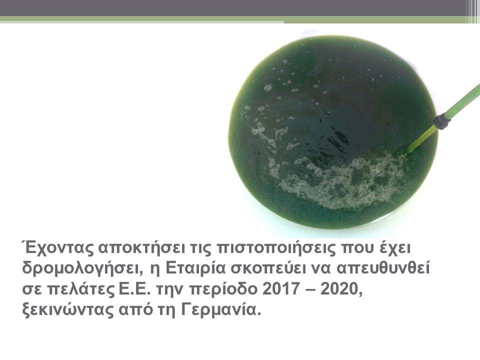 Τα προϊόντα της Algae Farms (Hellas): Ξηρή Μάζα Άλγης Pellets Άλγης Βιοέλαιο Άλγης Briquettes Άλγης