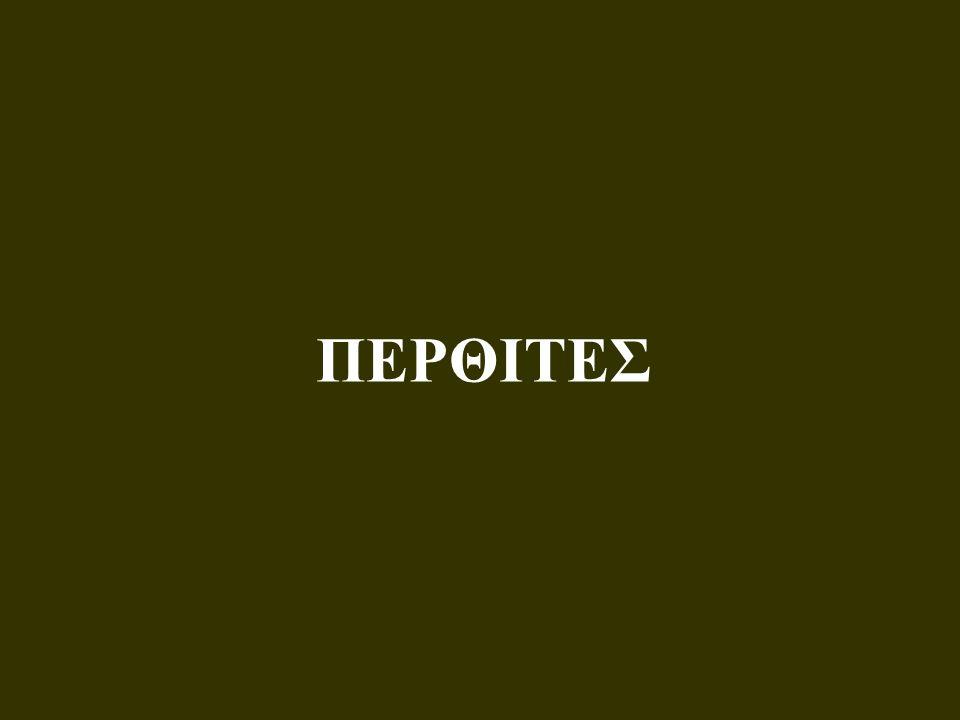 ΠΕΡΘΙΤΕΣ