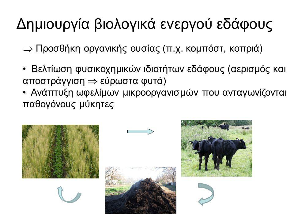 Δημιουργία βιολογικά ενεργού εδάφους  Προσθήκη οργανικής ουσίας (π.χ. κομπόστ, κοπριά) Βελτίωση φυσικοχημικών ιδιοτήτων εδάφους (αερισμός και αποστρά