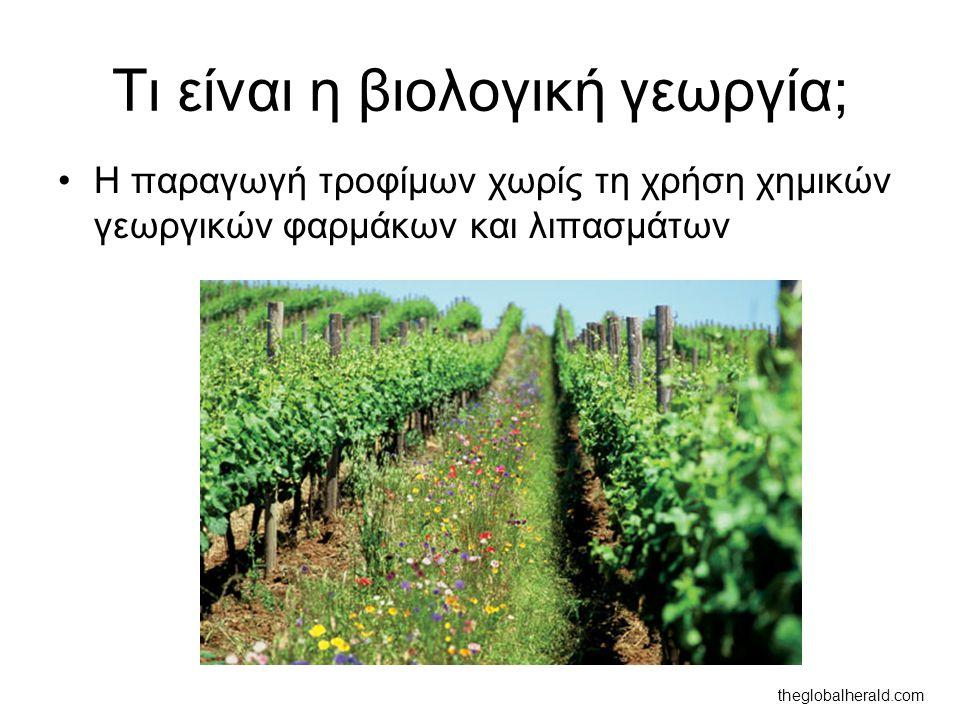 Τι είναι η βιολογική γεωργία; Η παραγωγή τροφίμων χωρίς τη χρήση χημικών γεωργικών φαρμάκων και λιπασμάτων theglobalherald.com