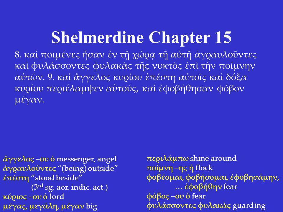 Shelmerdine Chapter 15 8.