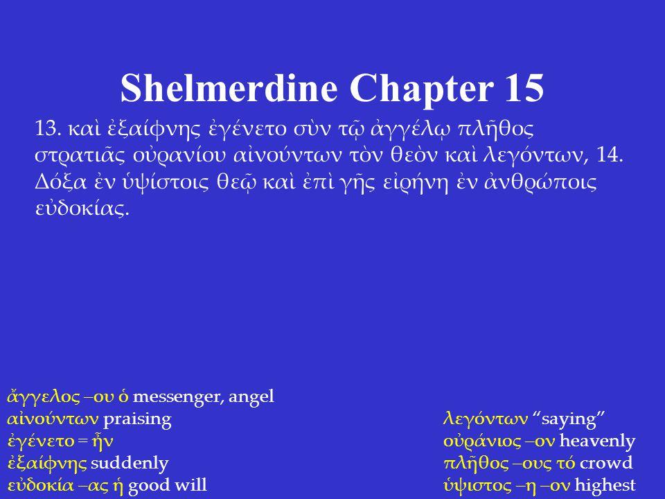 Shelmerdine Chapter 15 13.