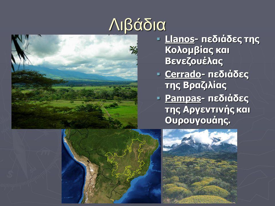 Λιβάδια  Llanos- πεδιάδες της Κολομβίας και Βενεζουέλας  Cerrado- πεδιάδες της Βραζιλίας  Pampas- πεδιάδες της Αργεντινής και Ουρουγουάης.