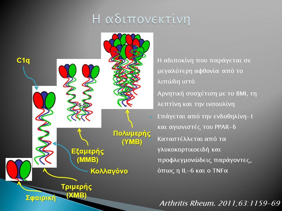  Η αδιποκίνη που παράγεται σε μεγαλύτερη αφθονία από το λιπώδη ιστό  Αρνητική συσχέτιση με το ΒΜΙ, τη λεπτίνη και την ινσουλίνη  Επάγεται από την ενδοθηλίνη-1 και αγωνιστές του PPAR-δ  Καταστέλλεται από τα γλυκοκορτικοειδή και προφλεγμονώδεις παράγοντες, όπως η IL-6 και ο TNFα Arthritis Rheum.