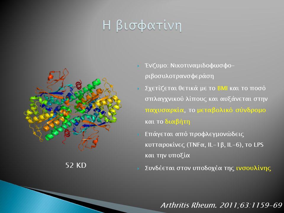  Ένζυμο: Νικοτιναμιδοφωσφο- ριβοσυλοτρανσφεράση  Σχετίζεται θετικά με το ΒΜΙ και το ποσό σπλαγχνικού λίπους και αυξάνεται στην παχυσαρκία, το μεταβολικό σύνδρομο και το διαβήτη  Επάγεται από προφλεγμονώδεις κυτταροκίνες (TNFα, IL-1β, IL-6), το LPS και την υποξία  Συνδέεται στον υποδοχέα της ινσουλίνης Arthritis Rheum.