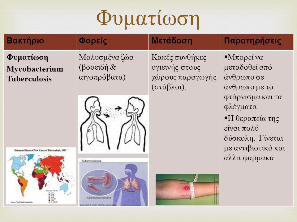  ΒακτήριοΦορείςΜετάδοσηΠαρατηρήσεις Φυματίωση Mycobacterium Tuberculosis Μολυσμένα ζώα (βοοειδή & αιγοπρόβατα) Κακές συνθήκες υγιεινής στους χώρους π