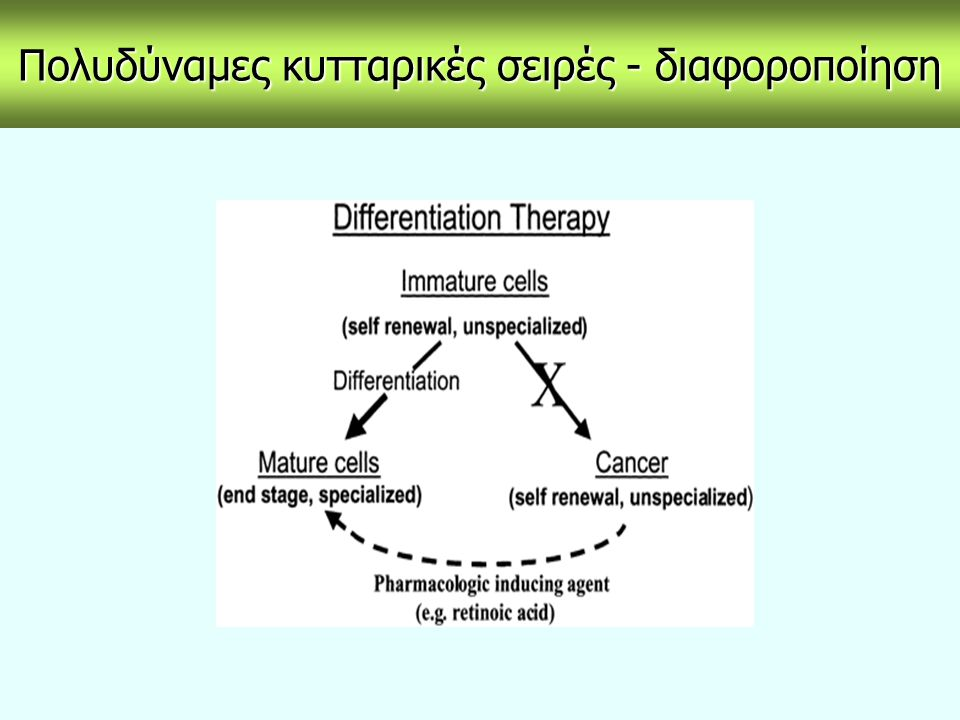 Βλαστικά κύτταρα – εμβρυονικά καρκινώματα Τα Τα εμβρυονικά καρκινώματα μπορούν να προκύψουν αυθόρμητα από ελλατωματικά γενετικά κύτταρα ή να παραχθούν κατά την εξωμήτρια εμφύτευση πρώιμων εμβρύων.