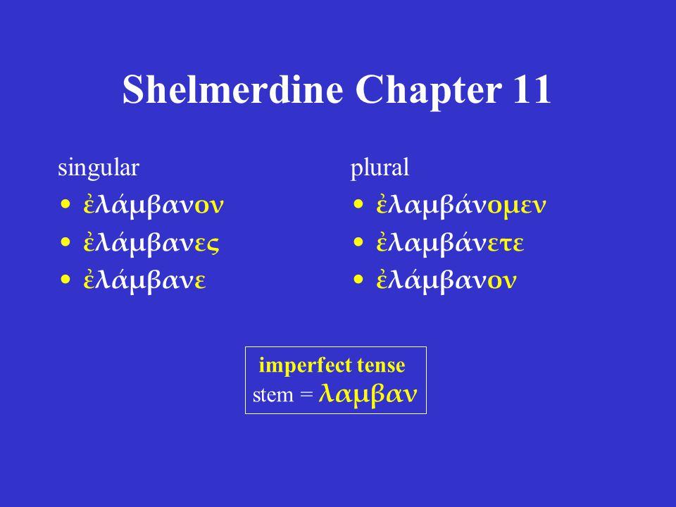 Shelmerdine Chapter 11 singular ἐλάμβανον ἐλάμβανες ἐλάμβανε plural ἐλαμβάνομεν ἐλαμβάνετε ἐλάμβανον imperfect tense stem = λαμβαν