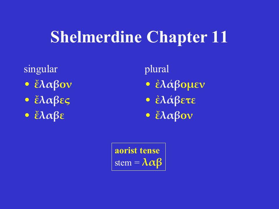 Shelmerdine Chapter 11 singular ἔλαβον ἔλαβες ἔλαβε plural ἐλάβομεν ἐλάβετε ἔλαβον aorist tense stem = λαβ