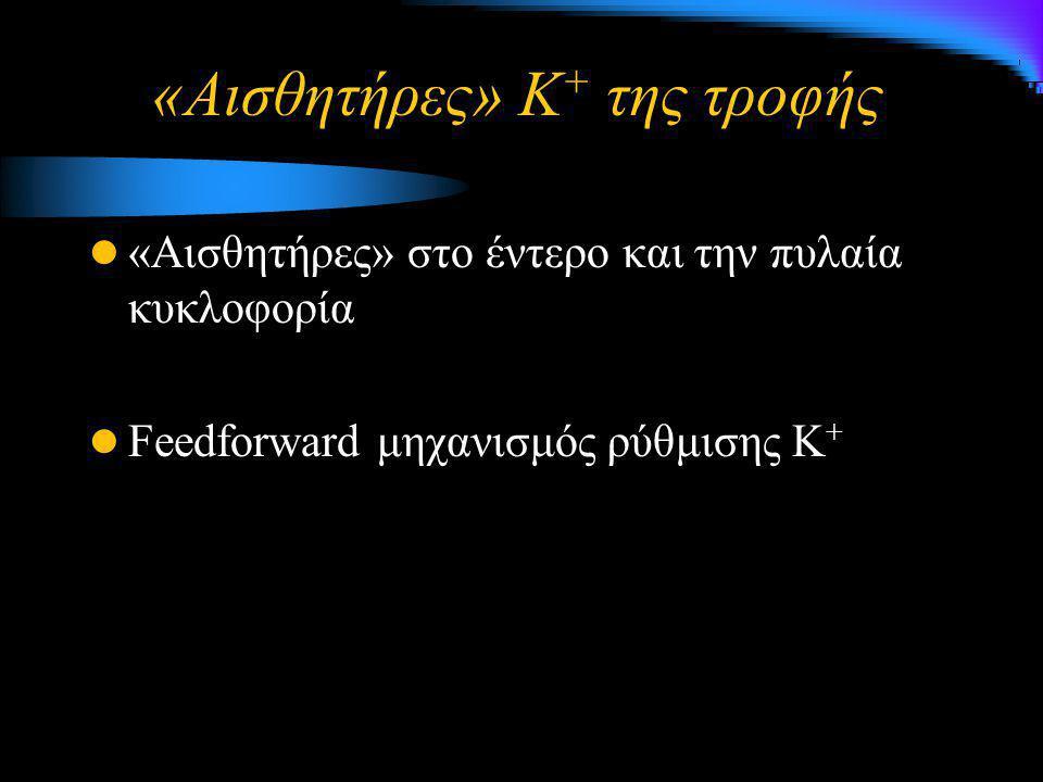 «Αισθητήρες» Κ + της τροφής «Αισθητήρες» στο έντερο και την πυλαία κυκλοφορία Feedforward μηχανισμός ρύθμισης Κ +