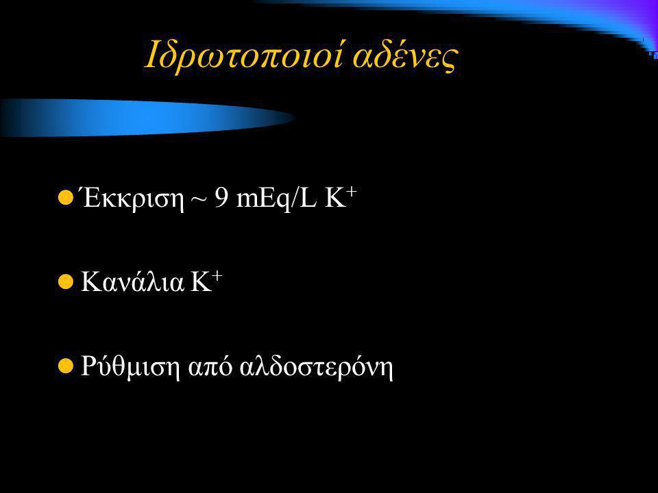 Ιδρωτοποιοί αδένες Έκκριση ~ 9 mEq/L K + Κανάλια Κ + Ρύθμιση από αλδοστερόνη