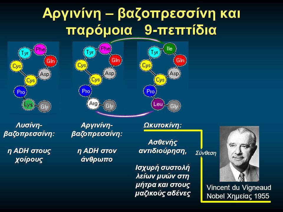 Αργινίνη – βαζοπρεσσίνη και παρόμοια 9-πεπτίδια Αργινίνη- βαζοπρεσσίνη: η ADH στον άνθρωπο Λυσίνη- βαζοπρεσσίνη: η ADH στους χοίρους Ωκυτοκίνη: Ασθενής αντιδιούρηση, Ισχυρή συστολή λείων μυών στη μήτρα και στους μαζικούς αδένες Vincent du Vigneaud Nobel Χημείας 1955 Σύνθεση