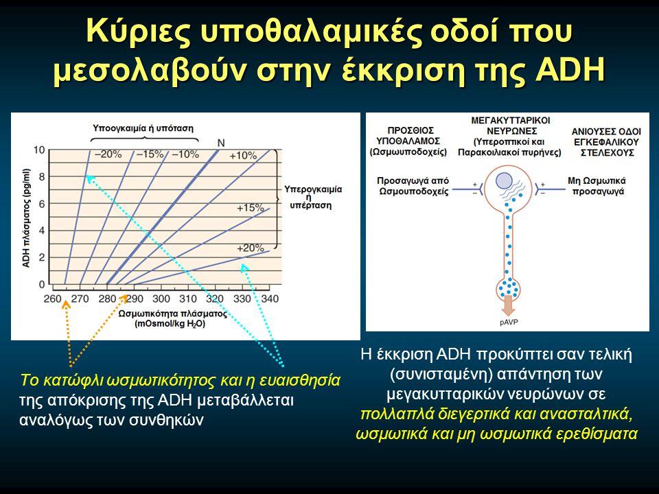 Κύριες υποθαλαμικές οδοί που μεσολαβούν στην έκκριση της ADH Η έκκριση ADH προκύπτει σαν τελική (συνισταμένη) απάντηση των μεγακυτταρικών νευρώνων σε πολλαπλά διεγερτικά και ανασταλτικά, ωσμωτικά και μη ωσμωτικά ερεθίσματα Tο κατώφλι ωσμωτικότητος και η ευαισθησία της απόκρισης της ADH μεταβάλλεται αναλόγως των συνθηκών