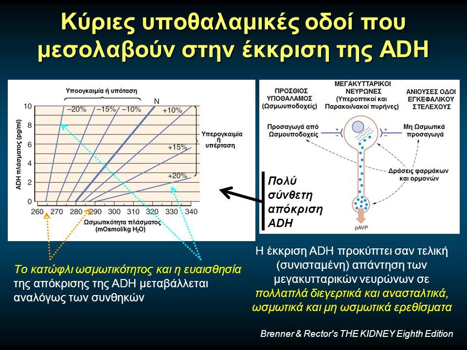 Κύριες υποθαλαμικές οδοί που μεσολαβούν στην έκκριση της ADH Η έκκριση ADH προκύπτει σαν τελική (συνισταμένη) απάντηση των μεγακυτταρικών νευρώνων σε πολλαπλά διεγερτικά και ανασταλτικά, ωσμωτικά και μη ωσμωτικά ερεθίσματα Tο κατώφλι ωσμωτικότητος και η ευαισθησία της απόκρισης της ADH μεταβάλλεται αναλόγως των συνθηκών Πολύ σύνθετη απόκριση ADH Brenner & Rector s THE KIDNEY Eighth Edition