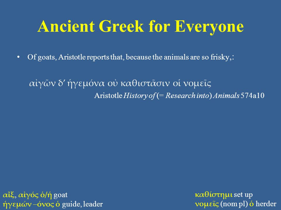 Ancient Greek for Everyone Of goats, Aristotle reports that, because the animals are so frisky,: αἰγῶν δ' ἡγεμόνα οὐ καθιστᾶσιν οἱ νομεῖς Aristotle History of (= Research into) Animals 574a10 αἴξ, αἰγός ὁ/ἡ goat ἡγεμών –όνος ὁ guide, leader καθίστημι set up νομεῖς (nom pl) ὁ herder