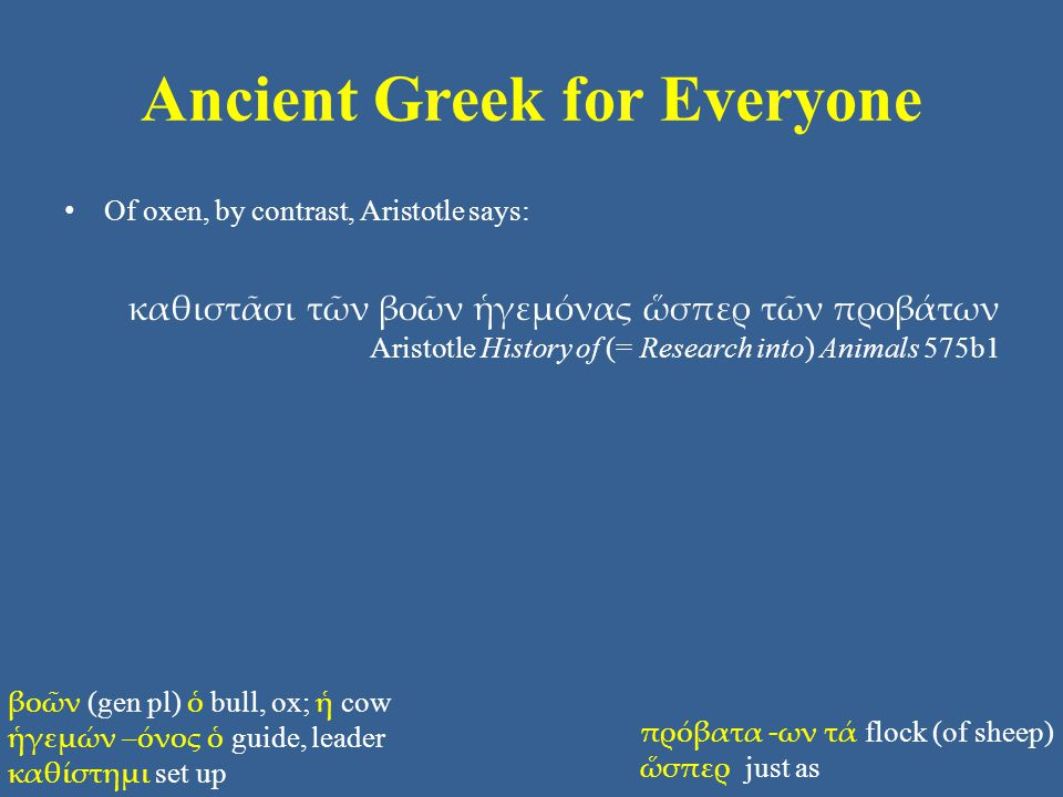 Ancient Greek for Everyone Of oxen, by contrast, Aristotle says: καθιστᾶσι τῶν βοῶν ἡγεμόνας ὥσπερ τῶν προβάτων Aristotle History of (= Research into) Animals 575b1 βοῶν (gen pl) ὁ bull, ox; ἡ cow ἡγεμών –όνος ὁ guide, leader καθίστημι set up πρόβατα -ων τά flock (of sheep) ὥσπερ just as