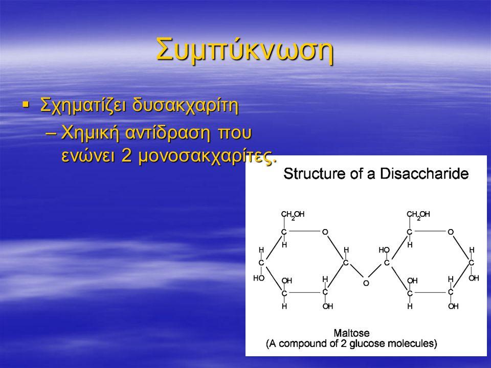 Συμπύκνωση  Σχηματίζει δυσακχαρίτη –Χημική αντίδραση που ενώνει 2 μονοσακχαρίτες.