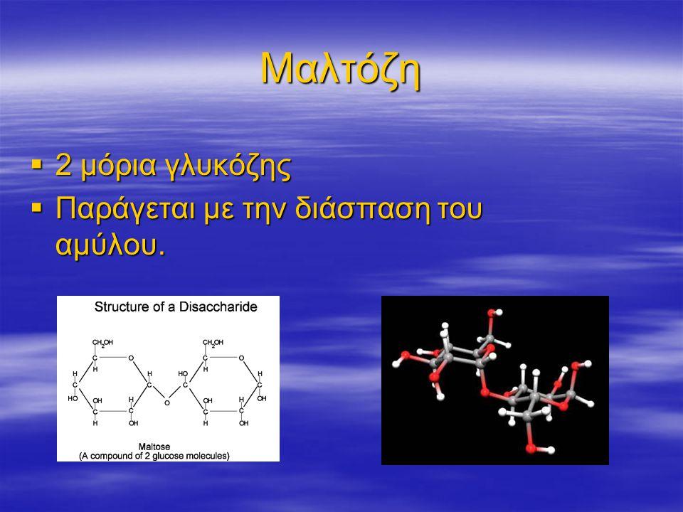 Μαλτόζη  2 μόρια γλυκόζης  Παράγεται με την διάσπαση του αμύλου.