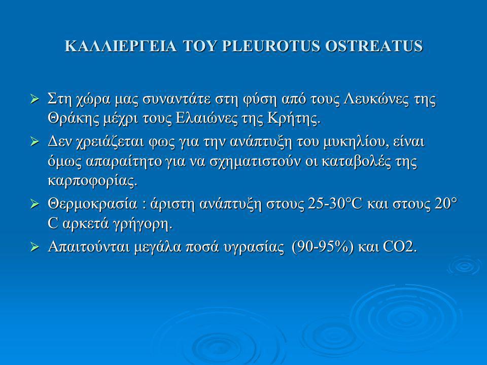 ΚΑΛΛΙΕΡΓΕΙΑ ΤΟΥ PLEUROTUS OSTREATUS  Στη χώρα μας συναντάτε στη φύση από τους Λευκώνες της Θράκης μέχρι τους Ελαιώνες της Κρήτης.