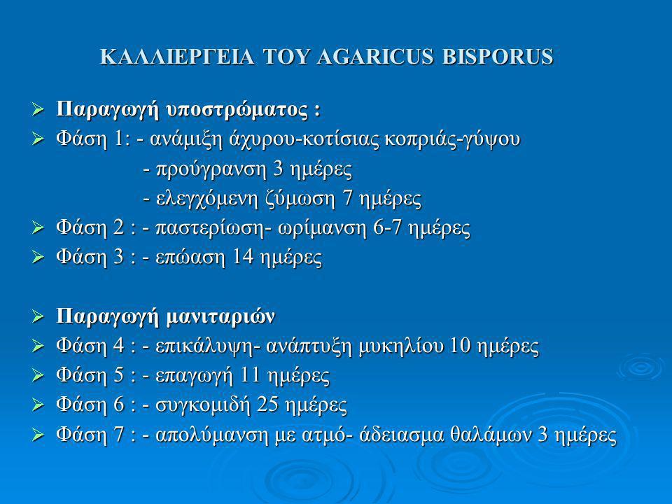 ΚΑΛΛΙΕΡΓΕΙΑ ΤΟΥ AGARICUS BISPORUS  Παραγωγή υποστρώματος :  Φάση 1: - ανάμιξη άχυρου-κοτίσιας κοπριάς-γύψου - προύγρανση 3 ημέρες - προύγρανση 3 ημέ
