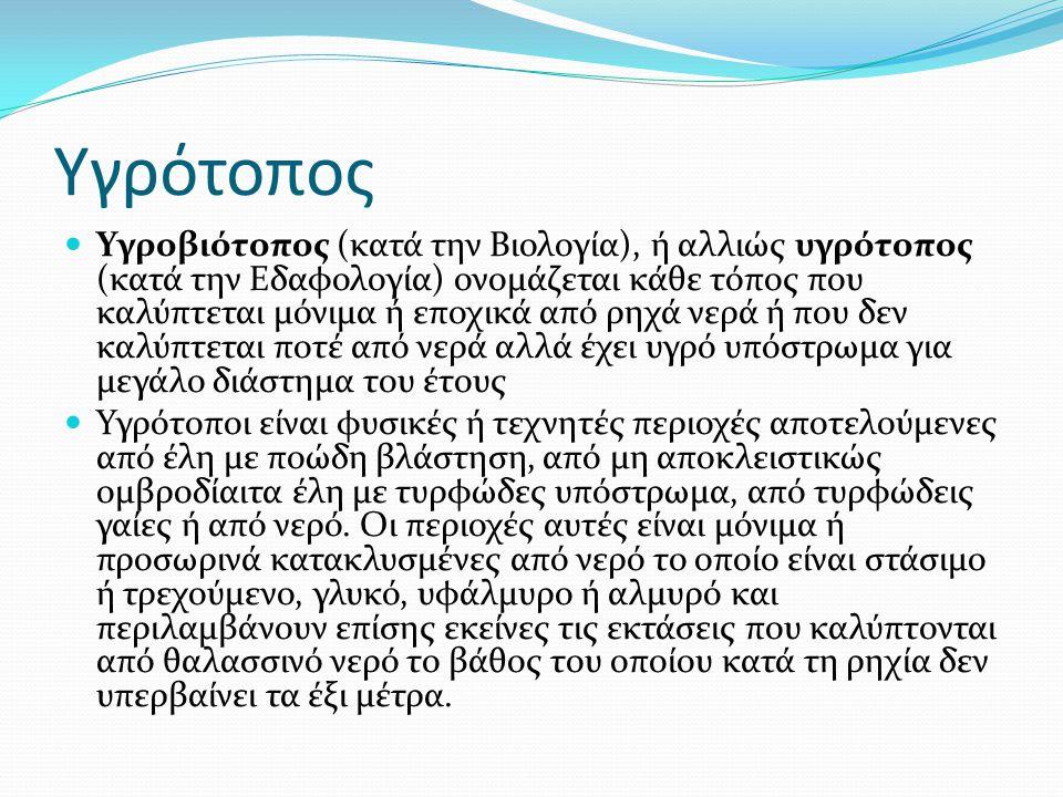 Υγρότοπος Υγροβιότοπος (κατά την Βιολογία), ή αλλιώς υγρότοπος (κατά την Εδαφολογία) ονομάζεται κάθε τόπος που καλύπτεται μόνιμα ή εποχικά από ρηχά νε