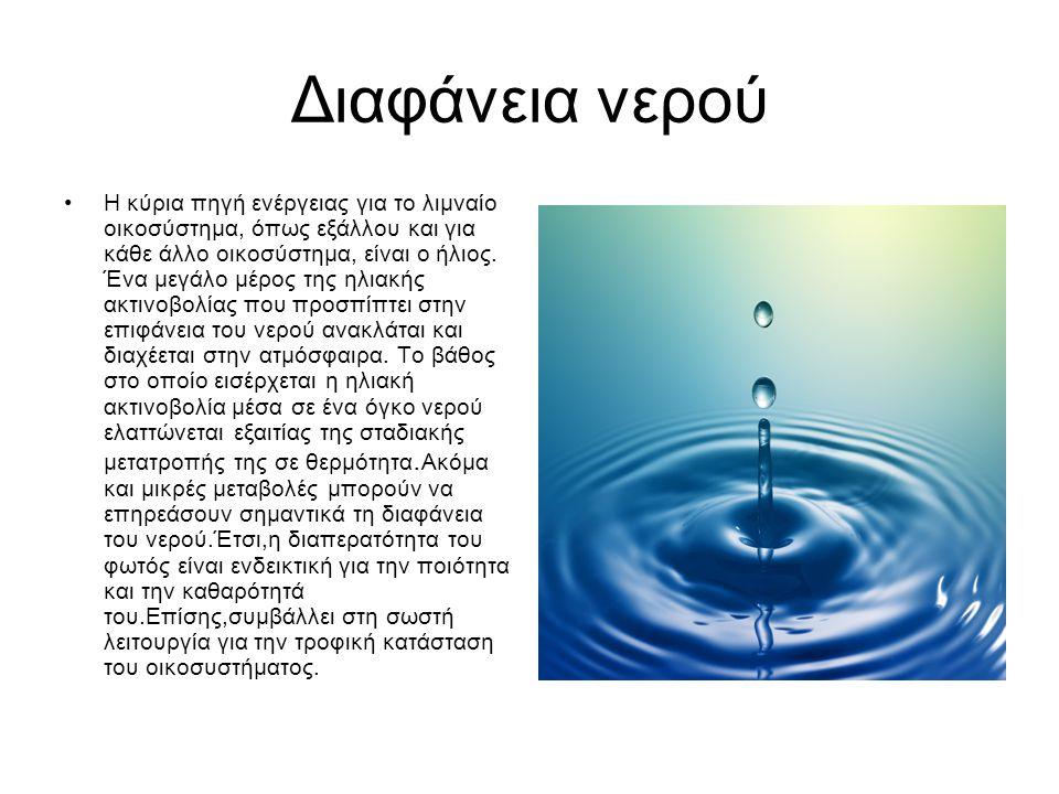 Διαφάνεια νερού Η κύρια πηγή ενέργειας για το λιμναίο οικοσύστημα, όπως εξάλλου και για κάθε άλλο οικοσύστημα, είναι ο ήλιος. Ένα μεγάλο μέρος της ηλι