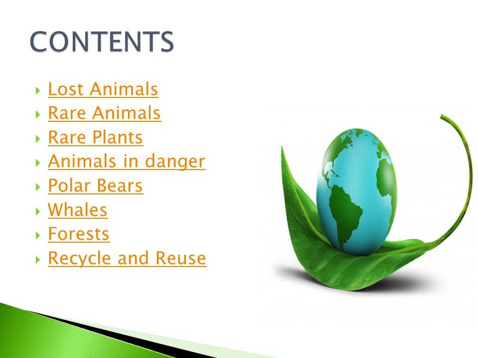  Lost Animals Lost Animals  Rare Animals Rare Animals  Rare Plants Rare Plants  Animals in danger Animals in danger  Polar Bears Polar Bears  Whales Whales  Forests Forests  Recycle and Reuse Recycle and Reuse