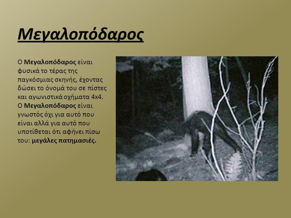 Γιορμουνγκάντ Σύμφωνα με την Σκανδιναβική μυθολογία το Γιορμουνγκάντ είναι ένα γιγάντιο θαλάσσιο ερπετό που είναι τόσο μεγάλο που περικυκλώνει ολόκληρο τον κόσμο δαγκώνοντας την ουρά του (ουροβόρο).