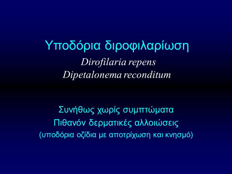 Υποδόρια διροφιλαρίωση Dirofilaria repens Dipetalonema reconditum Συνήθως χωρίς συμπτώματα Πιθανόν δερματικές αλλοιώσεις (υποδόρια οζίδια με αποτρίχωση και κνησμό)