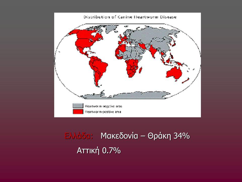Ελλάδα: Μακεδονία – Θράκη 34% Αττική 0.7% Αττική 0.7%
