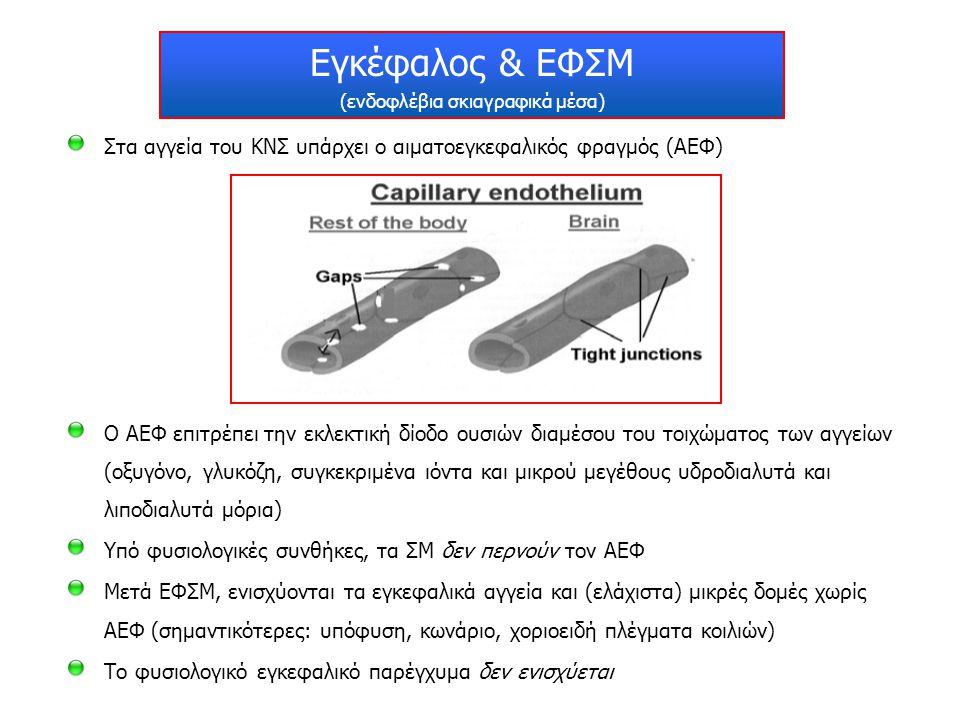Εγκέφαλος & ΕΦΣΜ (ενδοφλέβια σκιαγραφικά μέσα) Στα αγγεία του ΚΝΣ υπάρχει ο αιματοεγκεφαλικός φραγμός (ΑΕΦ) Ο ΑΕΦ επιτρέπει την εκλεκτική δίοδο ουσιών