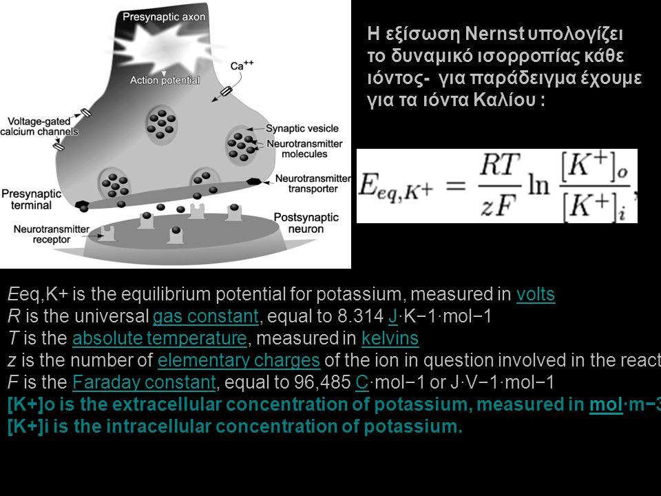 H εξίσωση Nernst υπολογίζει το δυναμικό ισορροπίας κάθε ιόντος- για παράδειγμα έχουμε για τα ιόντα Καλίου : Eeq,K+ is the equilibrium potential for po