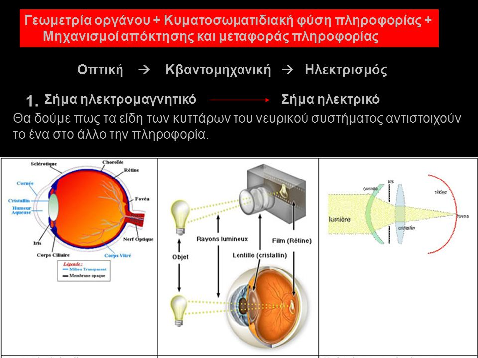 Σήμα ηλεκτρομαγνητικόΣήμα ηλεκτρικό Οπτική  Κβαντομηχανική  Ηλεκτρισμός Γεωμετρία οργάνου + Κυματοσωματιδιακή φύση πληροφορίας + Μηχανισμοί απόκτησης και μεταφοράς πληροφορίας 1.